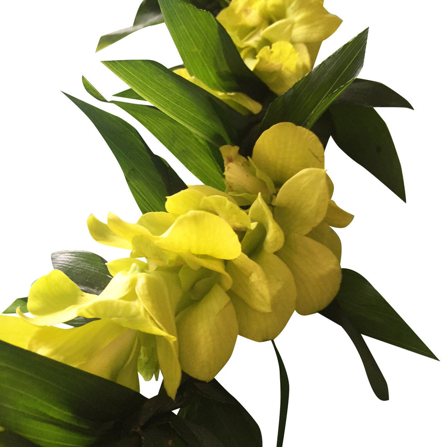 Aloha Jade orchid Wedding Package  (11 pc)
