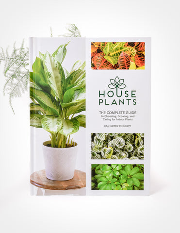 Houseplants: The Complete Guide