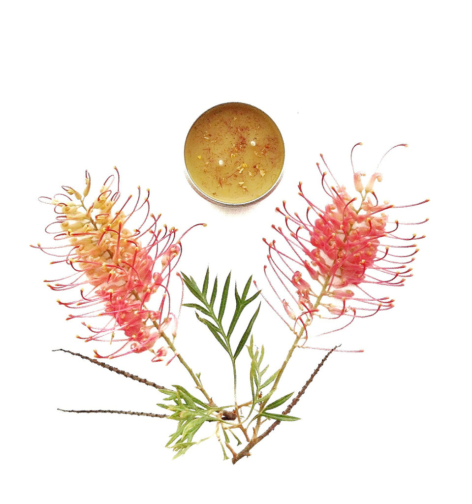 Natural, Beeswax Bush Walk Candles - Shop at Cockatoo Collection