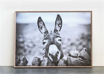 Framed Canvas Wall Decor with Donkey - Out of the Woodwork Designs