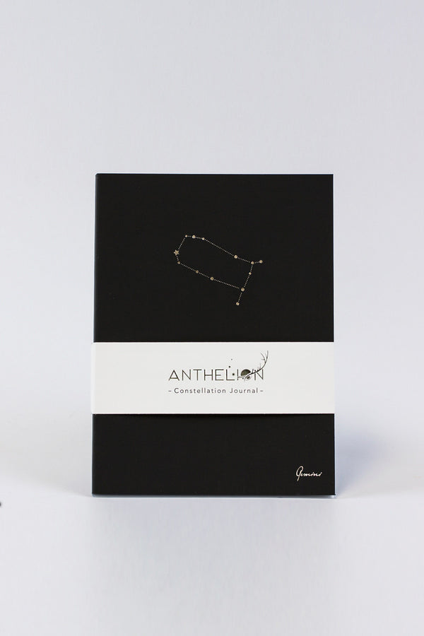 Shop Anthelion Journals