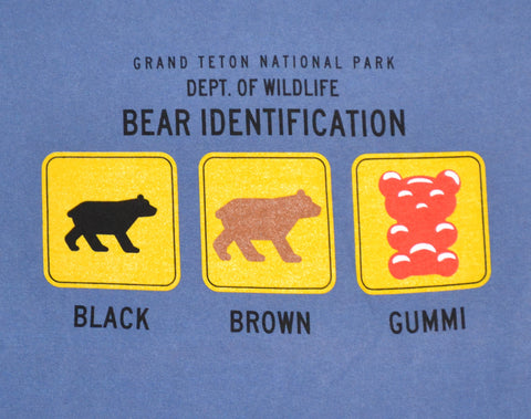 Bear Identification