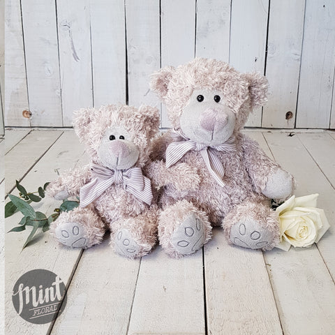 Plush Grey Teddy Bear