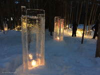 Ice Wrangler's Ice Luminary Woods Walk at Ice Castles New Hampshire
