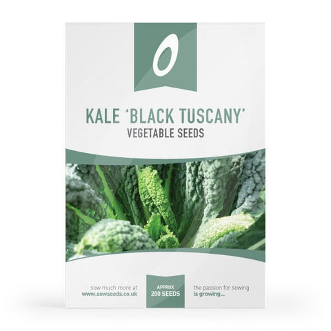 Kale Black Tuscany Seeds