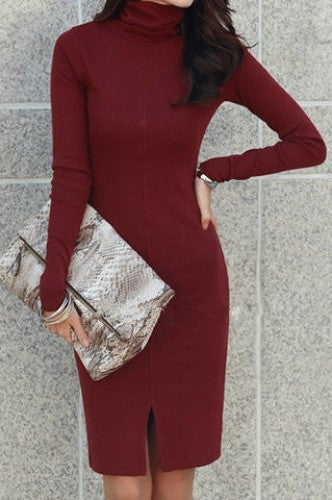 Turtle Neck Long Sleeve Knitted Chic Women's Dress