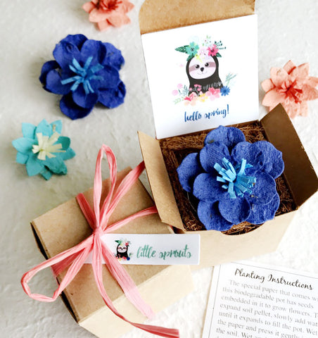 Sloth Seed paper hello spring box