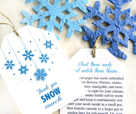 24 BIG Luggage Tags and Seed Paper Snowflakes Thank You Cards - Winter Wedding Favor Tags Frozen Birthday Party Flower Seed Paper