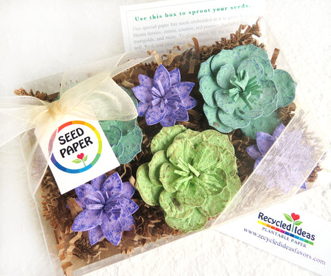 Recycled Ideas Favors plantable seed paper succulent-style flowers