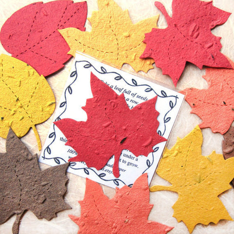 Recycled Ideas Favors plantable paper maple leaf with card