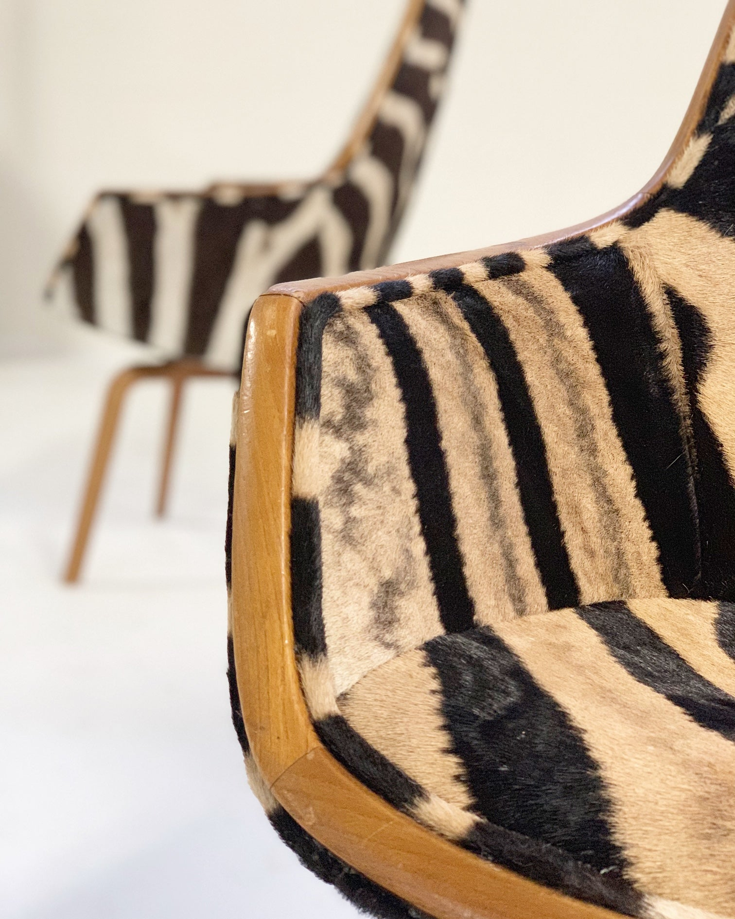 Rare Giraffe Chairs in Zebra Hide, pair - FORSYTH