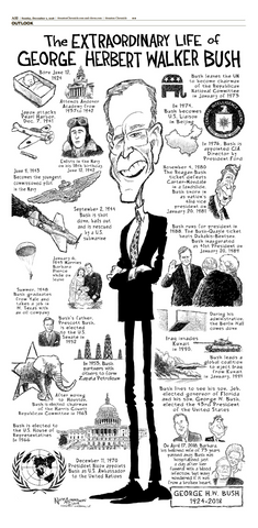 "Nick Anderson's President Bush Comic- High-Gloss Poster (11""x22"")"