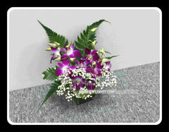 Orchid Small Arrangement - TBF4124