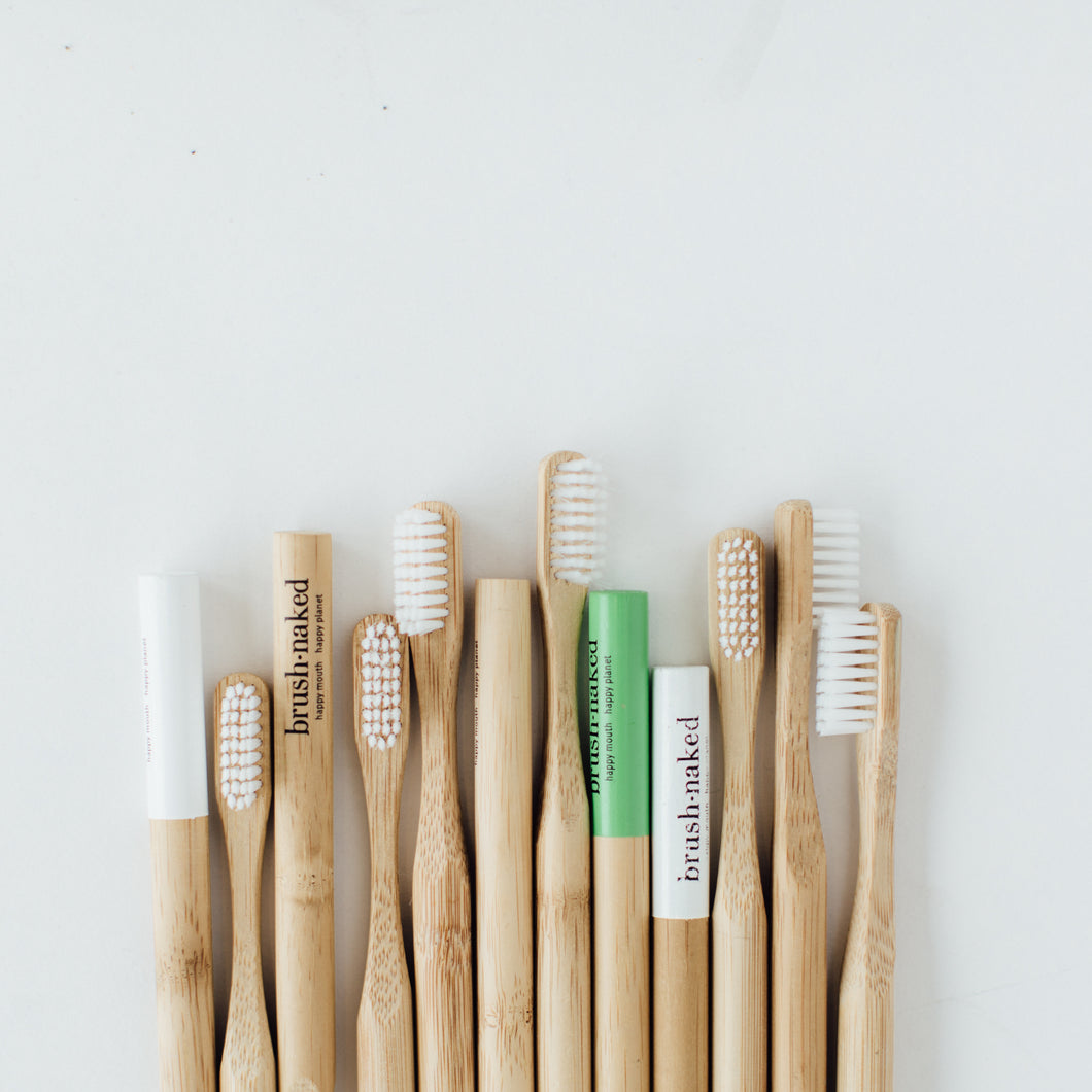 Adult Nylon Toothbrushes - 12 Pack