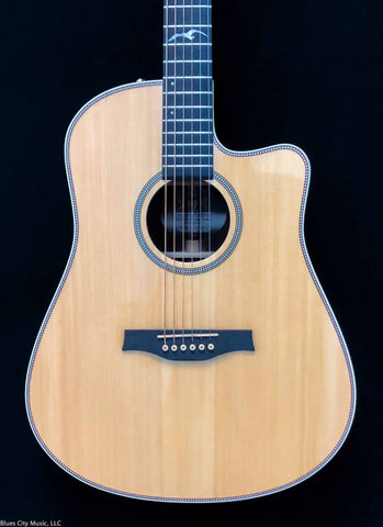 Seagull Artist Studio CW Deluxe Element / with DLX Tricase