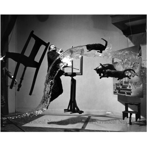Art Recreate Photography Dali Atomicus Philippe Halsman Decorative Canvas Poster