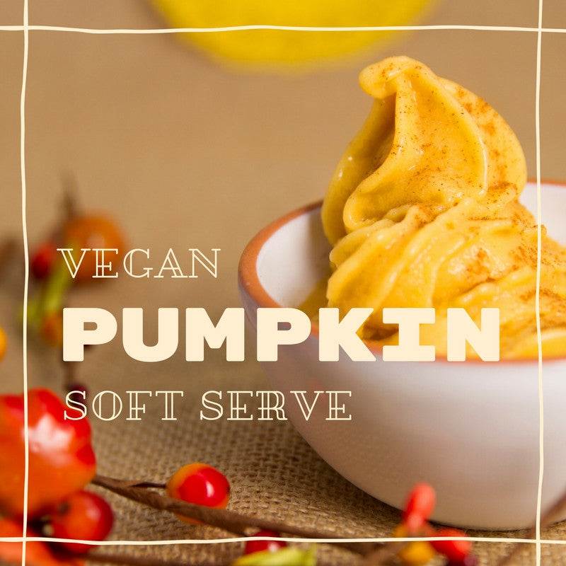 Vegan Pumpkin Soft Serve Ice Cream