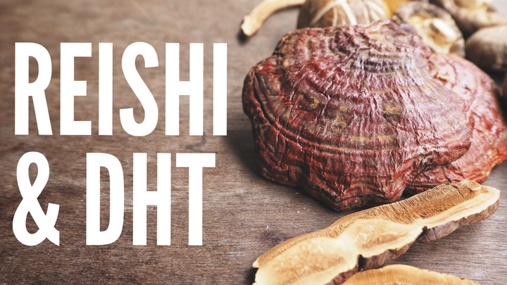 The Truth About Reishi & DHT