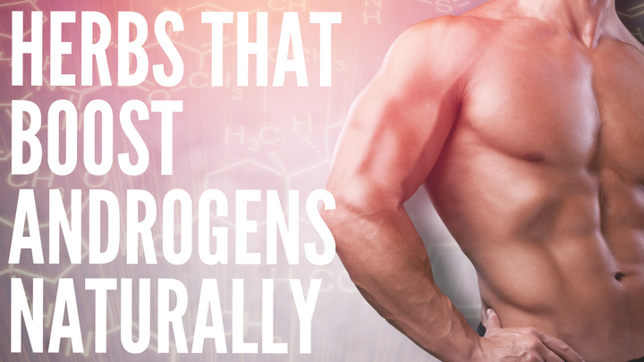 The TOP Androgenic Herbs: Boost Androgens Naturally