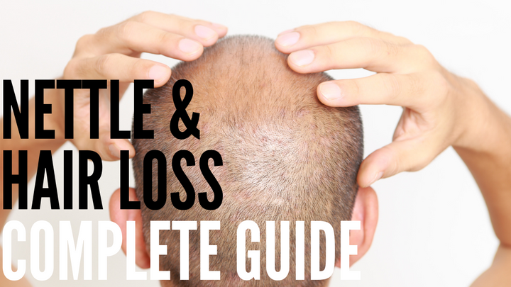 Nettle Root & Hair Loss: Complete Guide