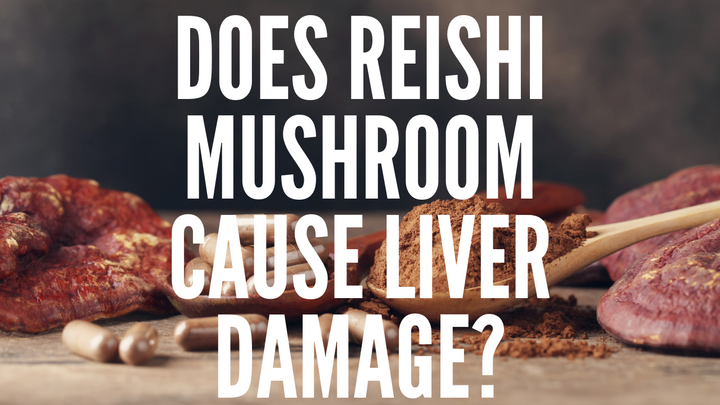 Does Reishi Mushroom Cause Liver Damage?