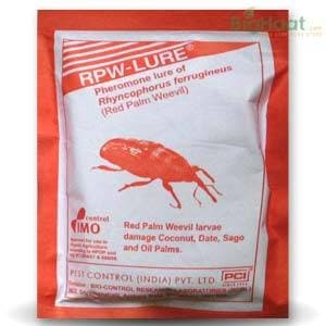 RED PALM WEEVIL LURE | Pest Control India