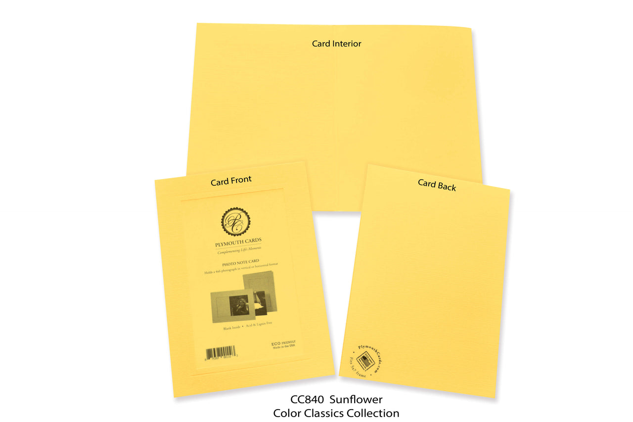 Sunflower Photo Insert Note Cards - Color Classics collection (color #CC840)