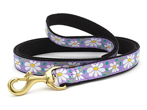 Up Country Daisy Lead - Wide - 6 ft