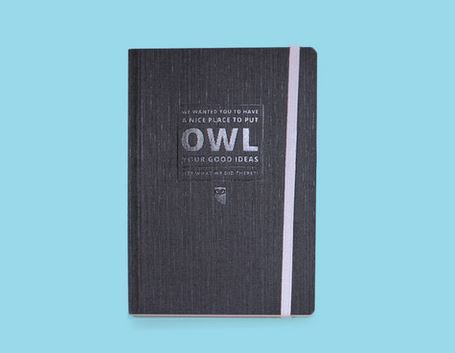 """Owl Ideas"" Notebook"