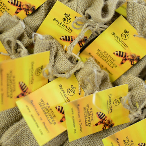 Beebombs - wild flower seeds