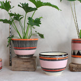 Stripey Liquorice All Sorts Bowl // Planter - Black, Dusty Pink, Nasturtium & Indian Red