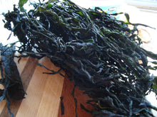Seaweed from the Northeast