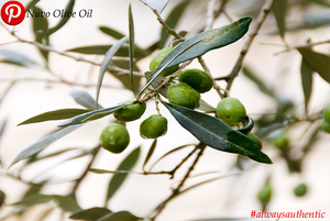 What is Olio Nuovo? The Freshest Harvested Olive Oil of the Season