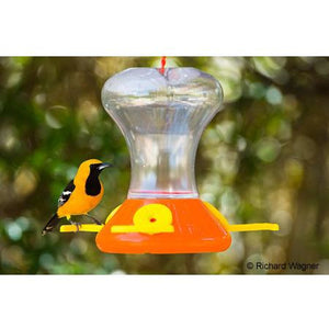 Songbird Essentials Flightline Junior Oriole Feeder