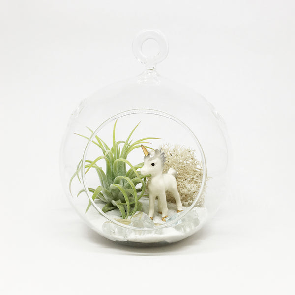 Unicorn Air Plant Terrarium Kit