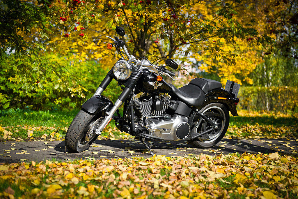 Harley Davidson Motorcycle Bike Nature Autumn Poster