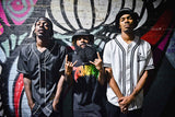 Flatbush ZOMBiES Rap Music Hip-Hop Poster
