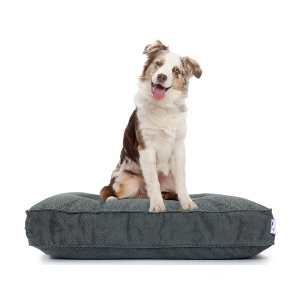 Orthopedic Cluster Fiber Filled Pet Bed w/ Stain Repellant LiveSmart Technology