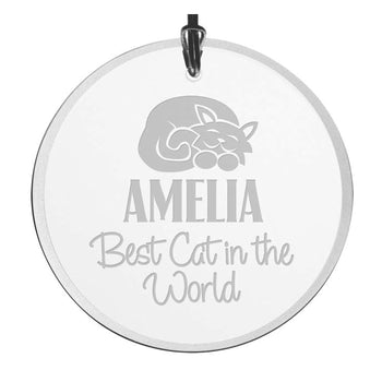 Personalized Best Cat In The World Christmas Ornament - Beveled Glass