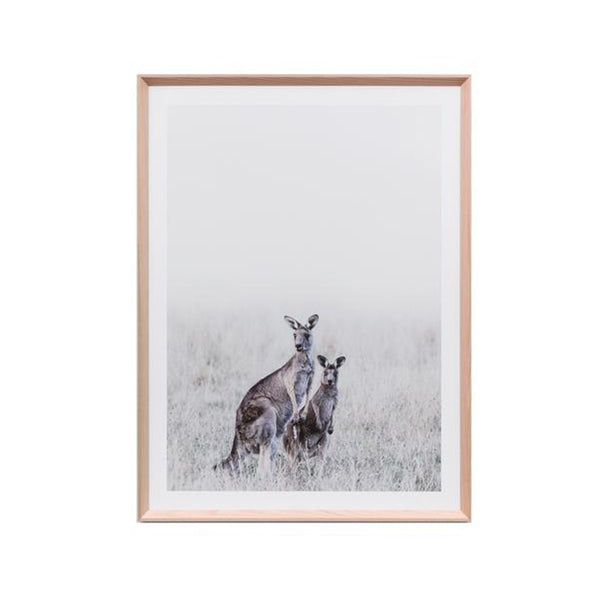 Kangaroo Print Misty Morning