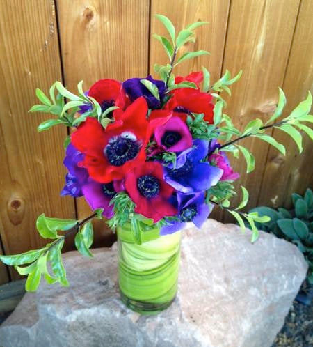local love anemone flowers by Gorgeous and green