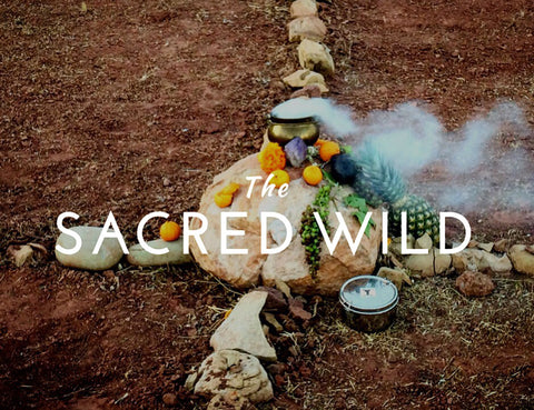 The Sacred Wild Journey LIVE