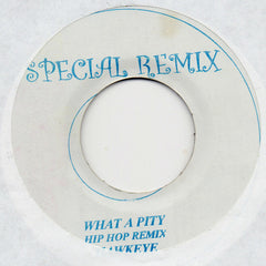 Hawkeye - What A Pity - Special Remix