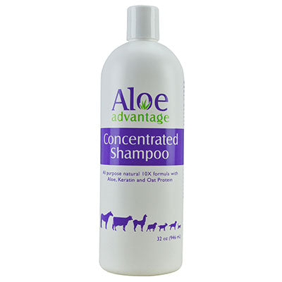 Aloe Advantage Concentrated Shampoo
