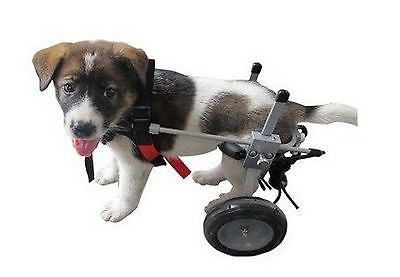 Dog Wheelchair by Best Friend Mobility (CHOOSE SIZE)