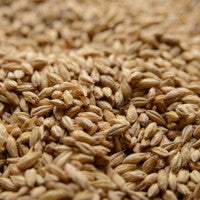 Briess 2-Row Pale Ale Malt 1 lb