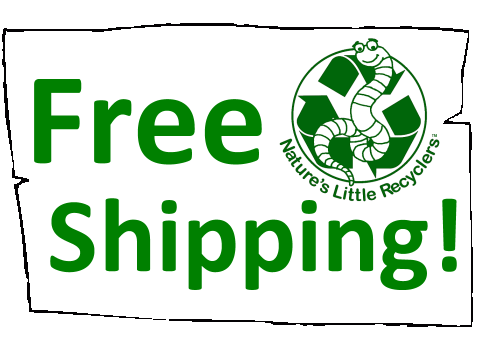 Free Shipping on Everything