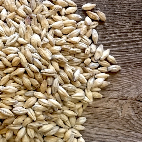 2-Row Malt (OiO)