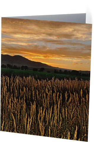 Western Skies at Sunset Note Cards and Greeting Cards (25 Pack)
