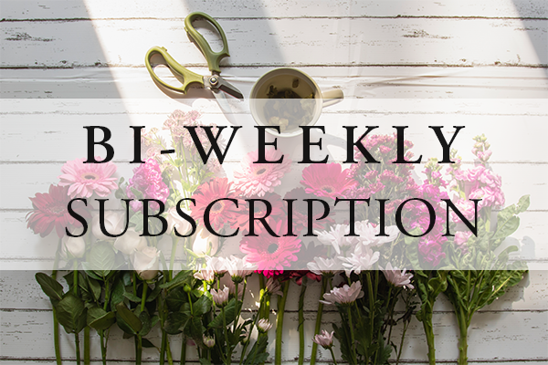 Bi-Weekly Subscription
